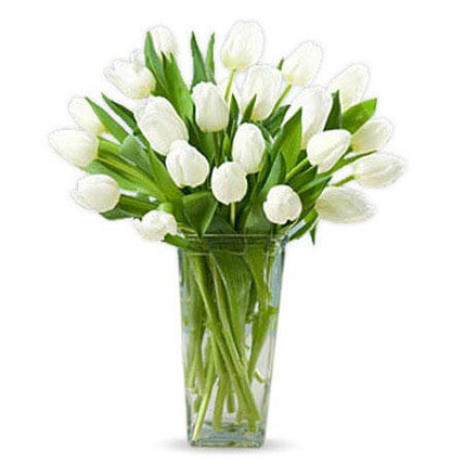 20 White Tulips: Teachers Day Gifts