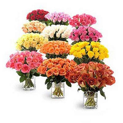 Twelve Bouquets of Roses: Premium Flowers