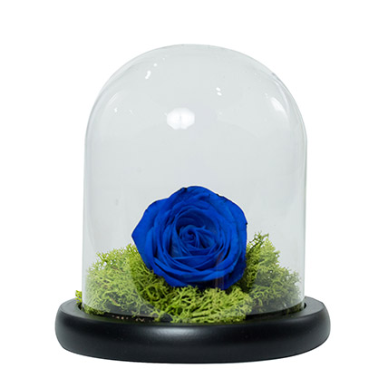 Elegant Blue Rose: Father's Day Bouquet