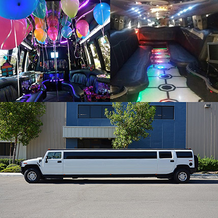 Royal White Limousine Experience: Party Supplies