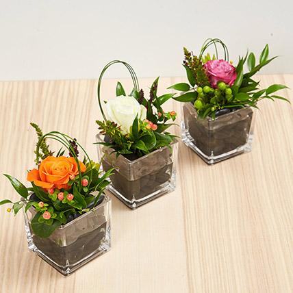 Set Of 3 Rose Vase Arrangements: Ramadan Flowers