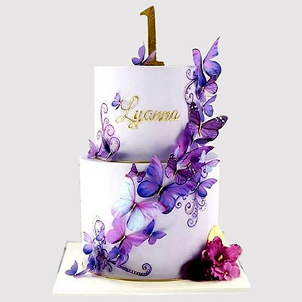 2 Tier Butterfly Cake: 1st Birthday Cakes