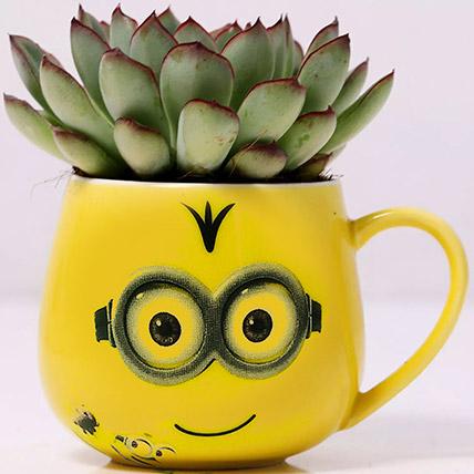 Green Echeveria Plant in Emoticon Mug: Plants