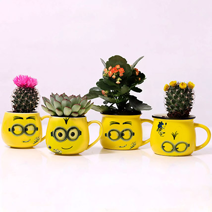 Set of 4 Plants in Emoticon Mugs: Flowering Plants