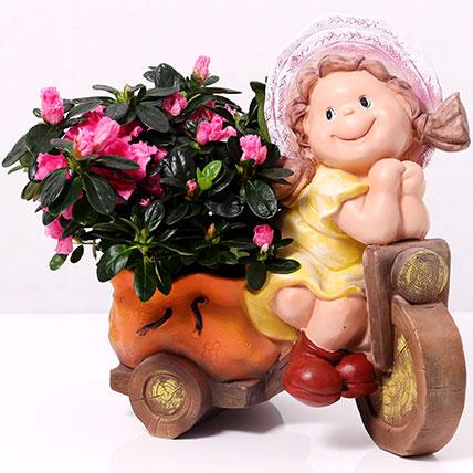 Azalea Plant in Baby Cycle Pot: Housewarming Plants