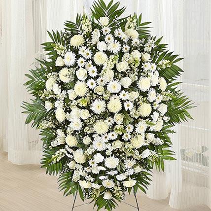 Gorgeous Blooms: Chrysanthemum Flowers