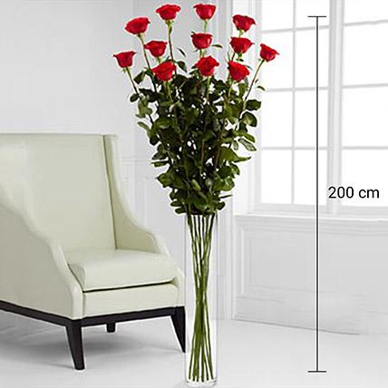 Vase Arrangement Of 12 Lovely Roses: Order Flowers