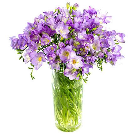 Darling Purple Freesias Vase: