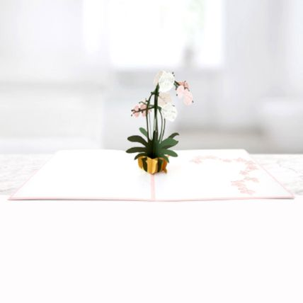 Orchid Plant 3D Card: 3d Greeting Cards