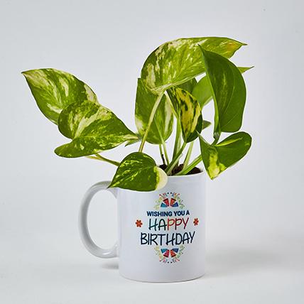 Money Plant In Happy Birthday Mug: