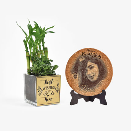 Best Wishes Plant n Personalised Plaque Combo: