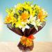 Sunny Asiatic Lilies SA