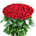 Bunch of Love Red Roses