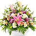 Elegance Of Flowers
