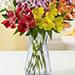Peruvian Lilies In Vase